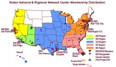 Redes En Acción Activities Continue under New NCI Community